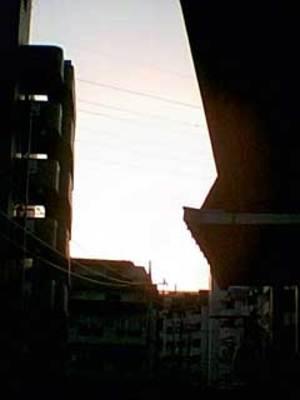 Photo0323002